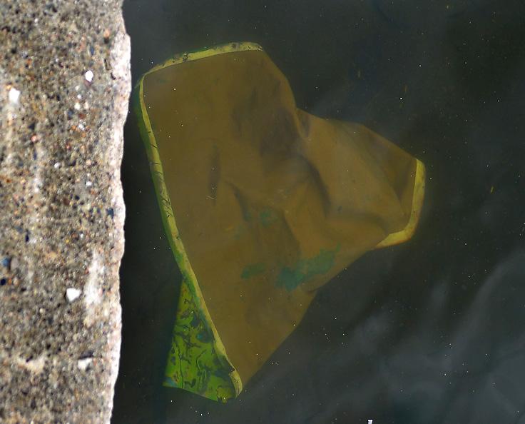 Utstilling langs elva Drammen