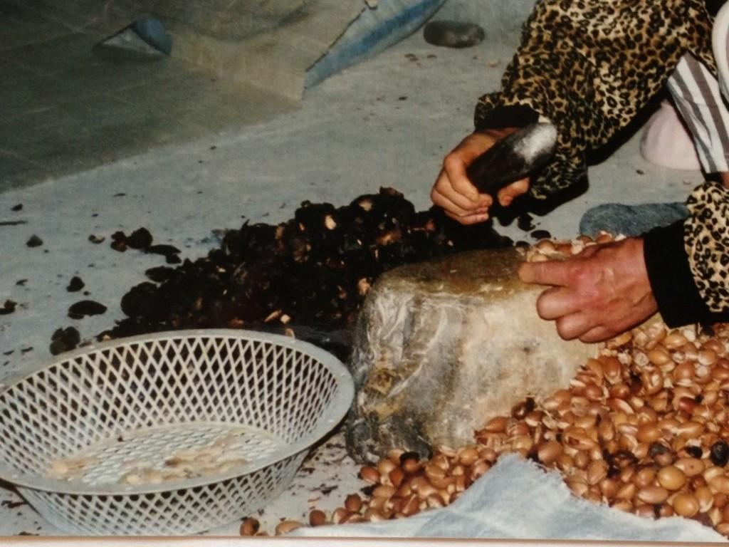 Kvinnene deler en og en sten for hånd. Det er de små, hvite kjernene i plastfatet oljen utvinnes fra.