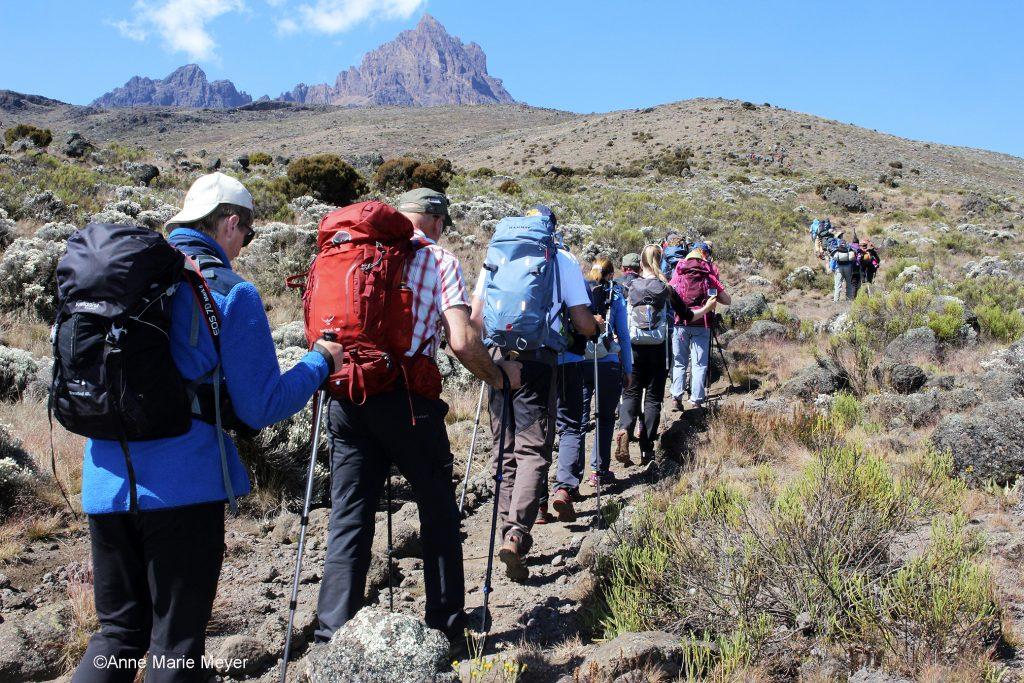 På vei opp Kilimanjaro