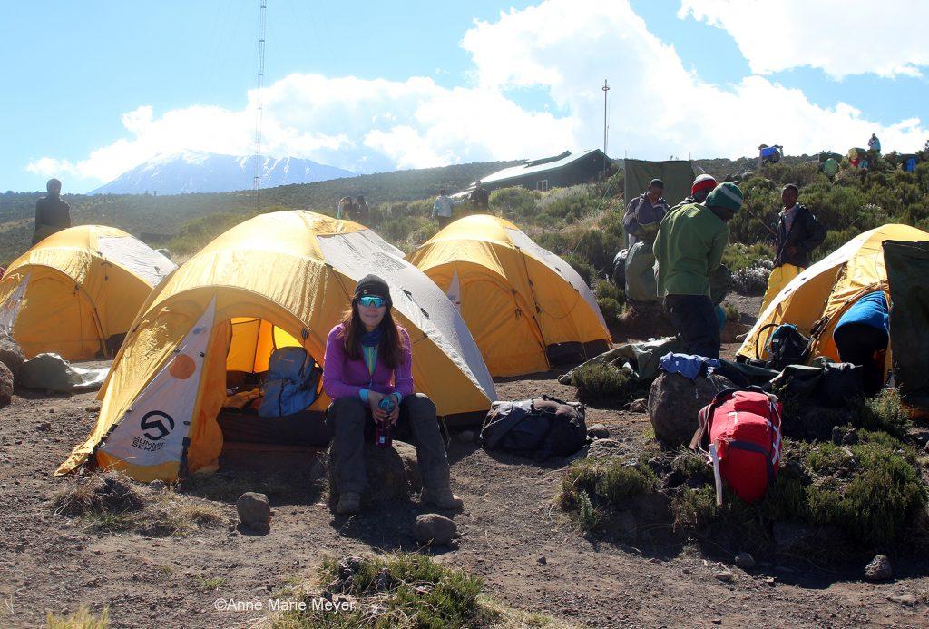 Campen vår