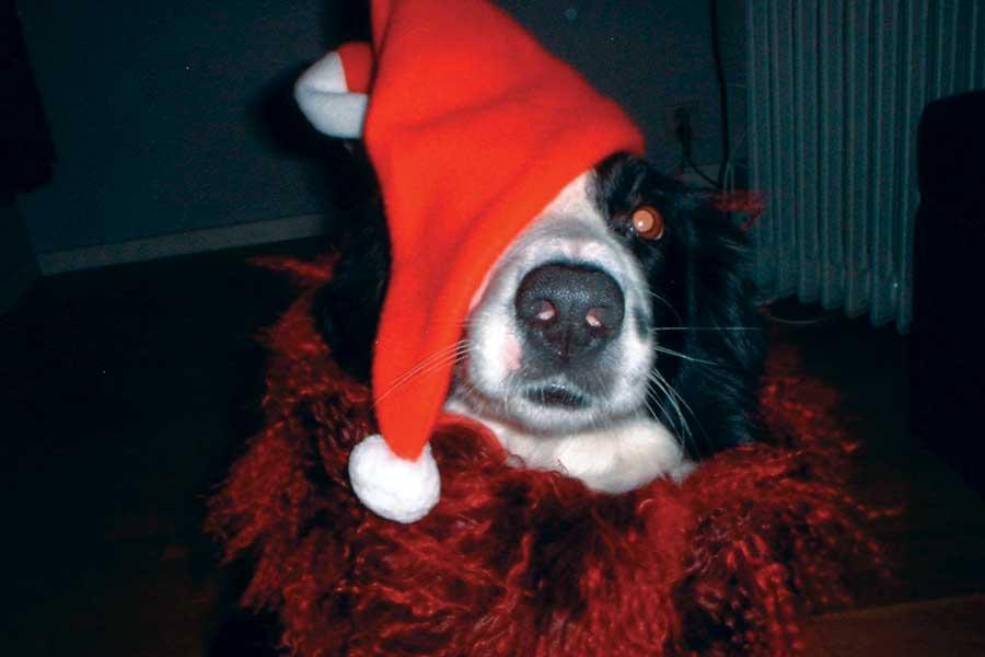 Emma ønsker god jul!