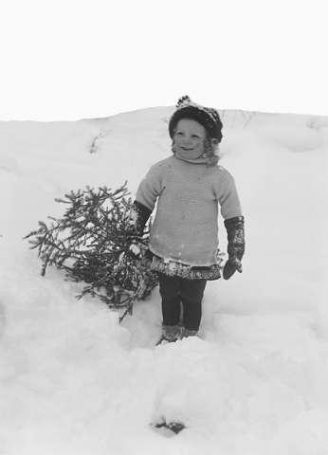 Ut og finne juletre, 1909. Foto: A.B. Wilse, Nasjonalbiblioteket